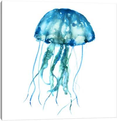 Jellyfish Canvas Art Print