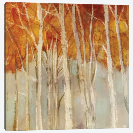 Belgium Forest II Canvas Print #ESK12} by Edward Selkirk Canvas Artwork