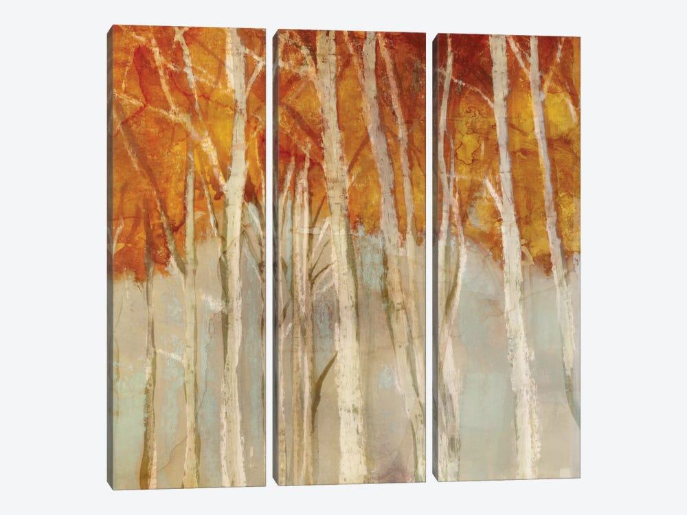 Belgium Forest II by Edward Selkirk 3-piece Canvas Wall Art
