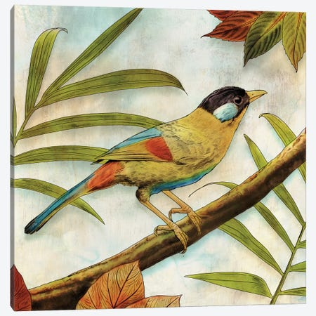 Jungle Bird I Canvas Print #ESK132} by Edward Selkirk Canvas Print