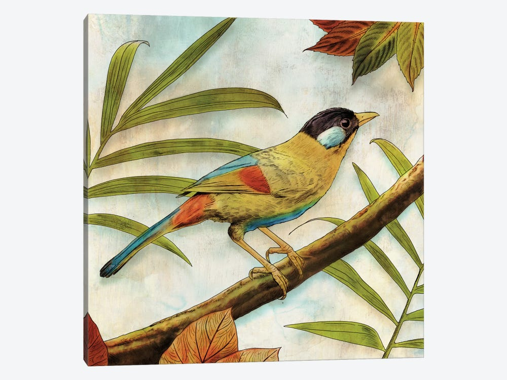 Jungle Bird I by Edward Selkirk 1-piece Canvas Wall Art