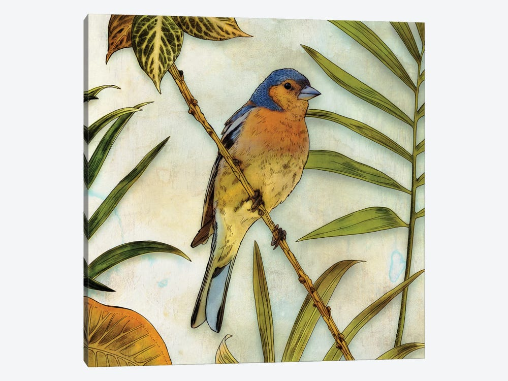 Jungle Bird II by Edward Selkirk 1-piece Canvas Print