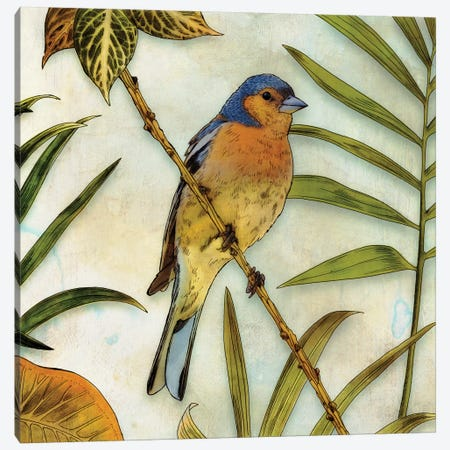 Jungle Bird II Canvas Print #ESK133} by Edward Selkirk Canvas Print