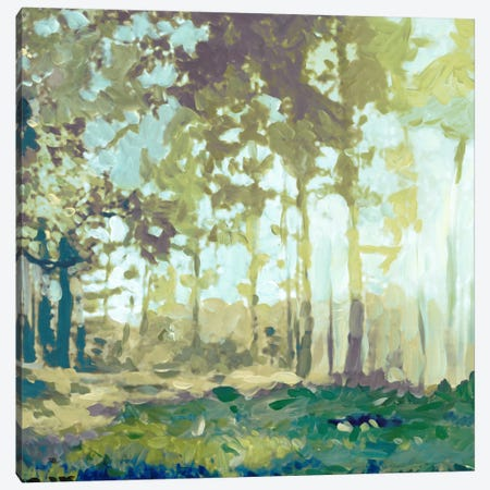 Bellewoods Canvas Print #ESK13} by Edward Selkirk Canvas Art
