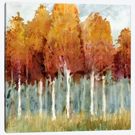 Birch I Canvas Print #ESK15} by Edward Selkirk Canvas Print