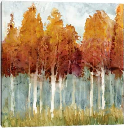 Birch II Canvas Art Print