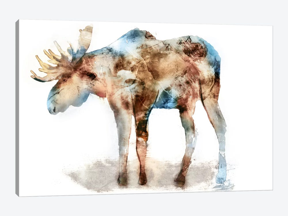 Moose by Edward Selkirk 1-piece Canvas Print
