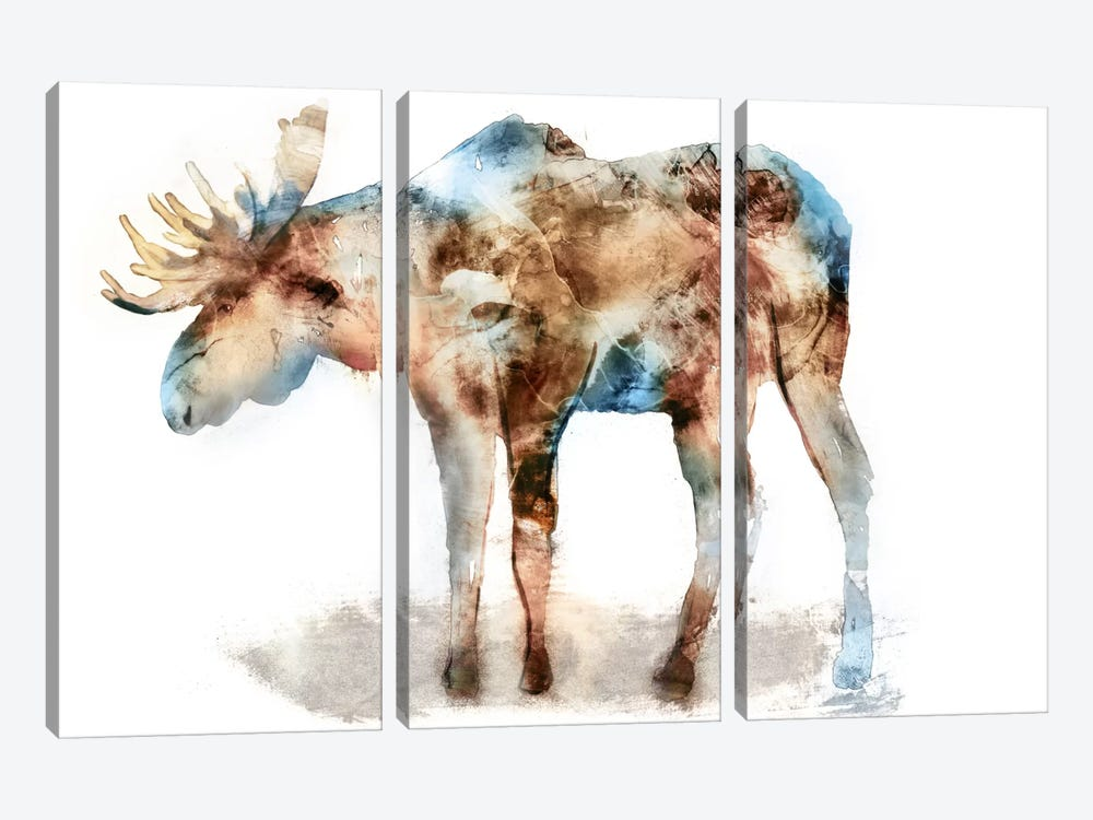 Moose by Edward Selkirk 3-piece Canvas Art Print
