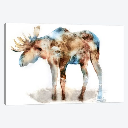 Moose 3-Piece Canvas #ESK171} by Edward Selkirk Canvas Print
