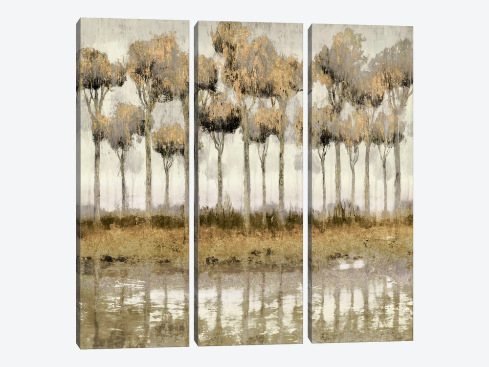 Mozambique I by Edward Selkirk 3-piece Canvas Art