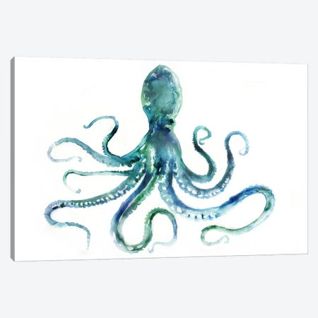 Octopus Canvas Print #ESK196} by Edward Selkirk Canvas Art