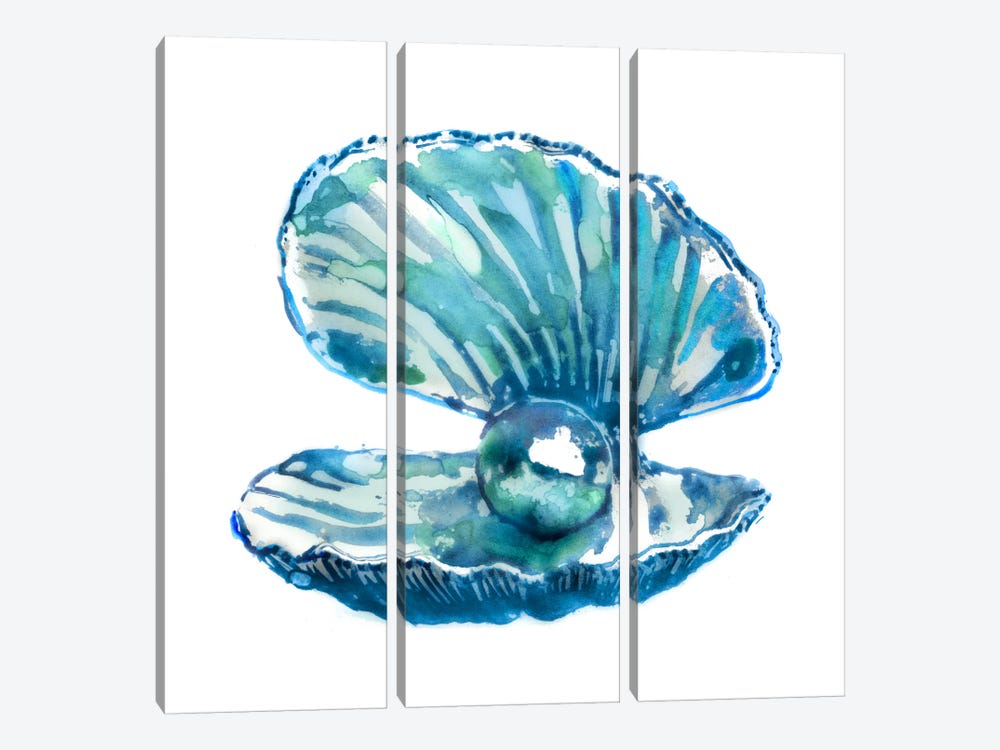 Oyster by Edward Selkirk 3-piece Canvas Artwork
