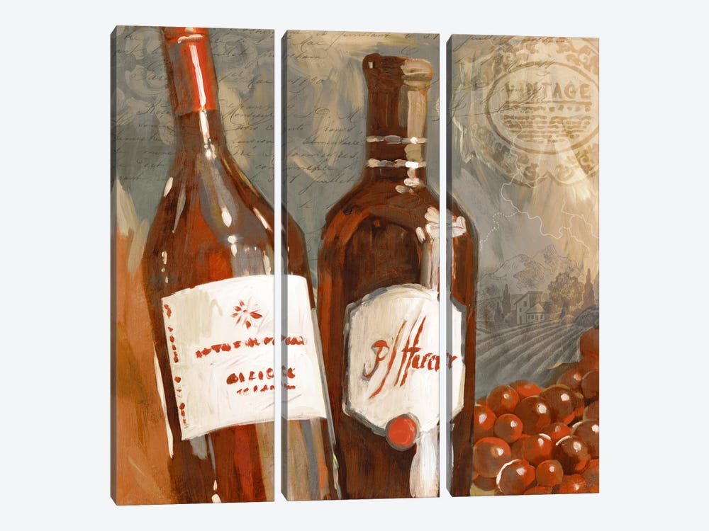 Red Wine I by Edward Selkirk 3-piece Canvas Print