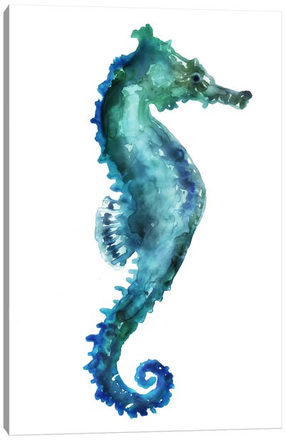 Sea Horse Canvas Art Print