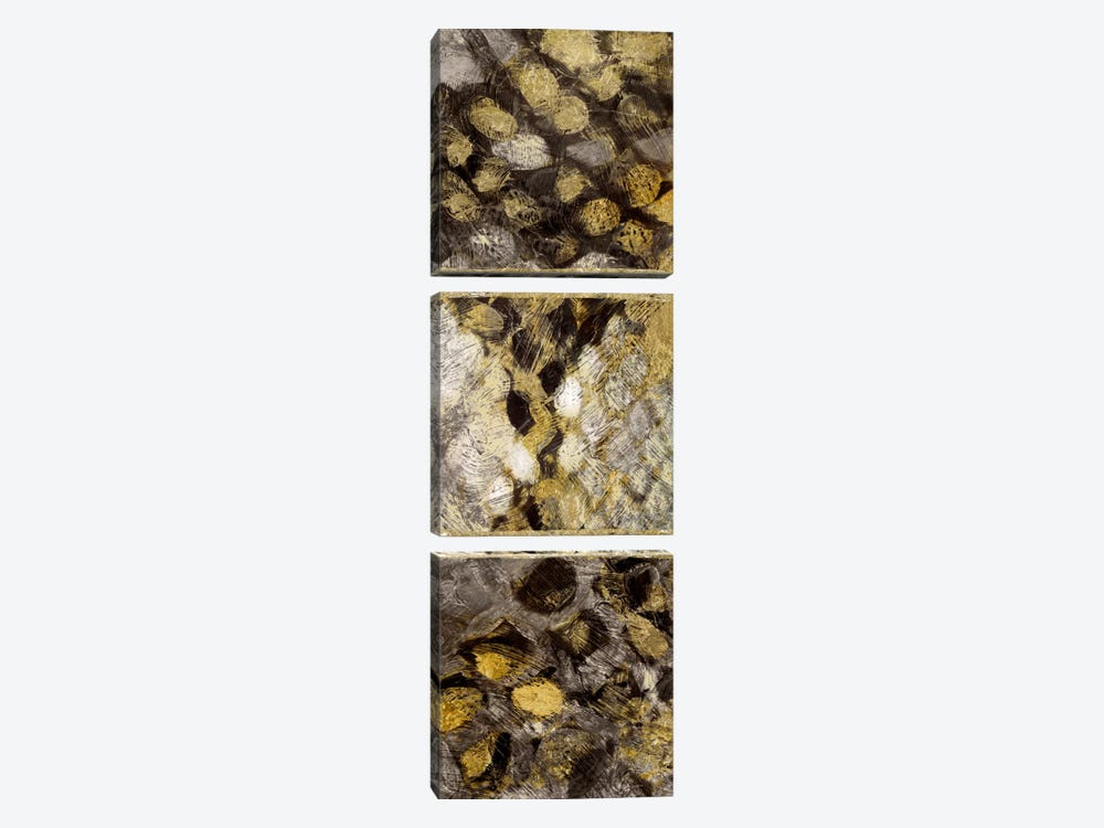 Snake Squares I by Edward Selkirk 3-piece Canvas Art