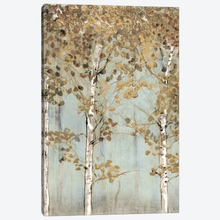 Soft Birch Canvas Print #ESK238} by Edward Selkirk Canvas Art
