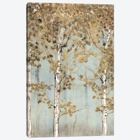 Soft Birch Canvas Print #ESK238} by Edward Selkirk Canvas Art