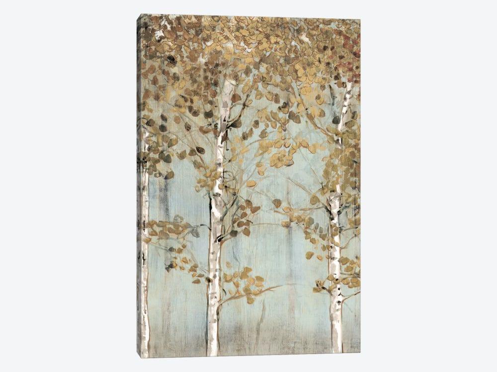 Soft Birch by Edward Selkirk 1-piece Canvas Artwork