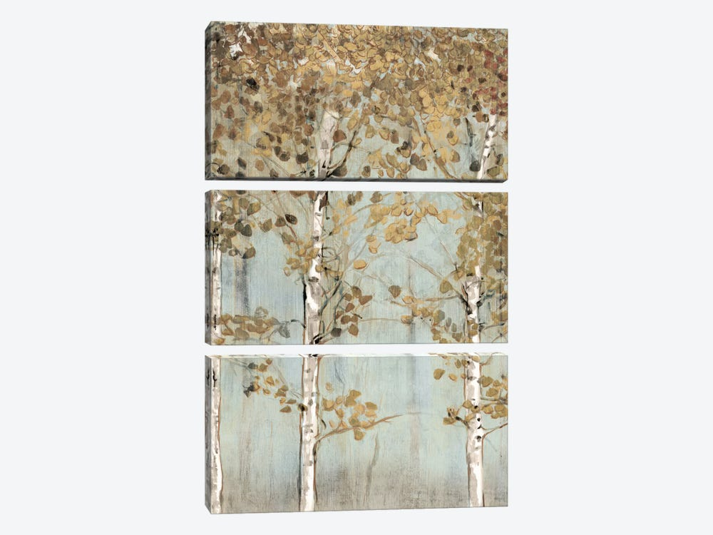 Soft Birch by Edward Selkirk 3-piece Canvas Wall Art