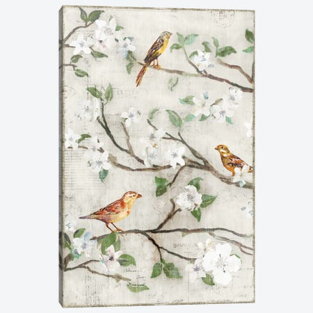 Songs Of Blossoms I Canvas Print #ESK239} by Edward Selkirk Canvas Artwork