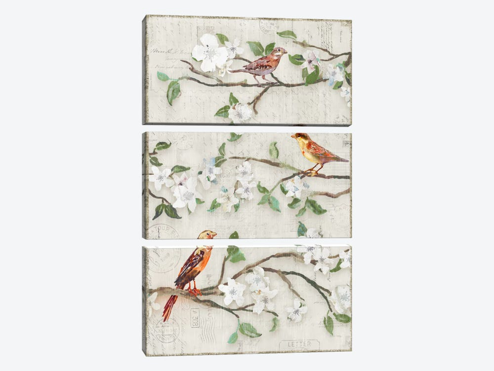 Songs Of Blossoms II by Edward Selkirk 3-piece Canvas Print