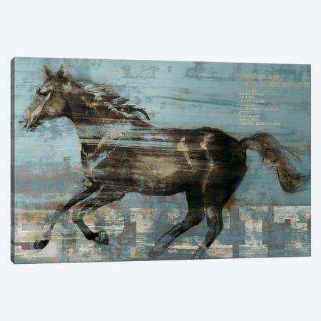 Spirit Canvas Print #ESK241} by Edward Selkirk Canvas Art Print