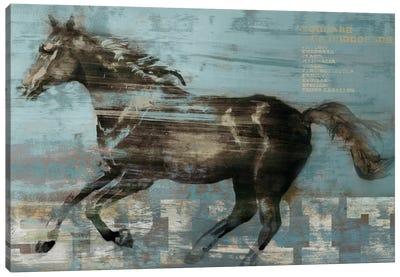 Spirit Canvas Art Print