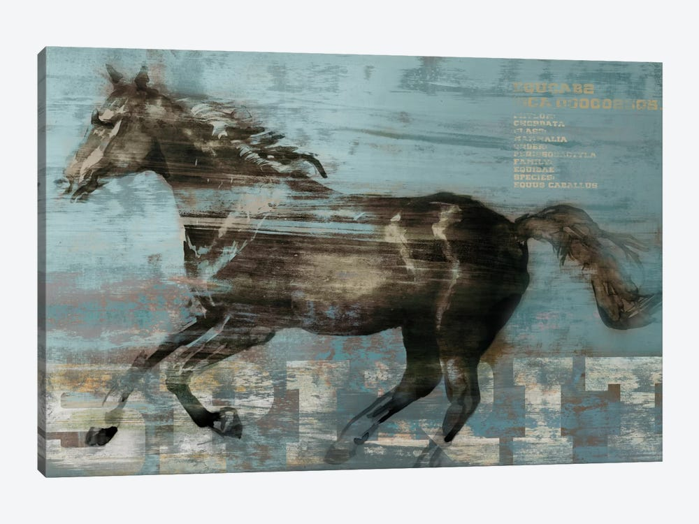Spirit by Edward Selkirk 1-piece Canvas Wall Art