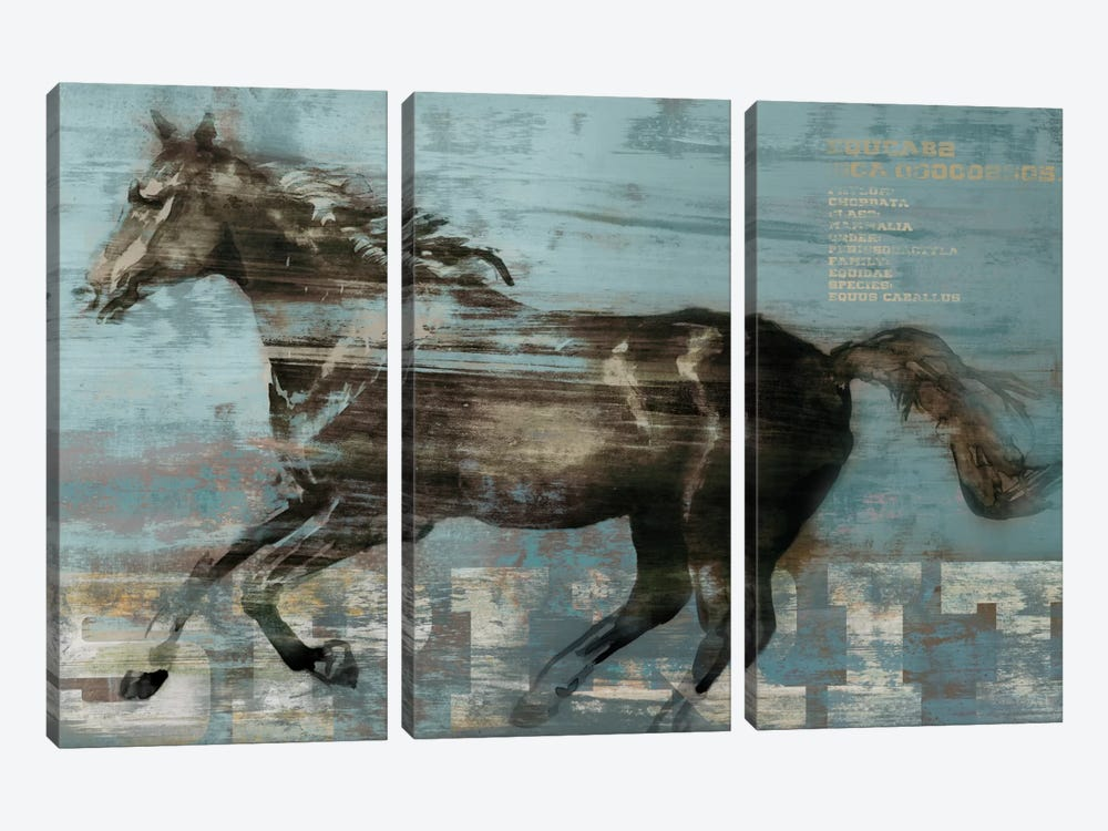 Spirit by Edward Selkirk 3-piece Canvas Artwork