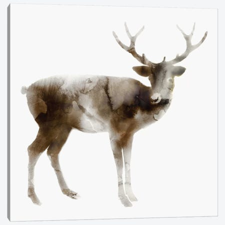 Stag Canvas Print #ESK247} by Edward Selkirk Canvas Wall Art
