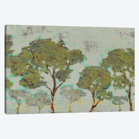 Tree Tranquility Canvas Print #ESK269} by Edward Selkirk Canvas Print