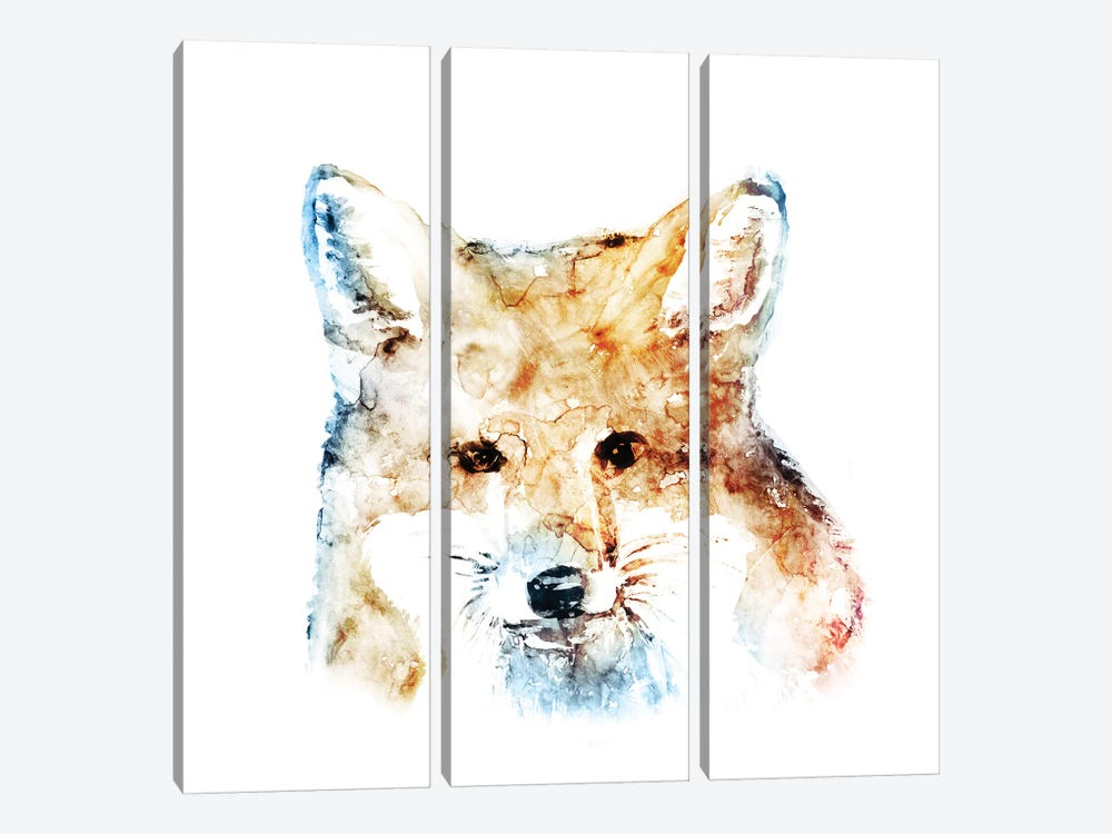 Watercolour Fox by Edward Selkirk 3-piece Canvas Print