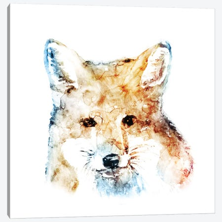 Watercolour Fox Canvas Print #ESK291} by Edward Selkirk Canvas Art