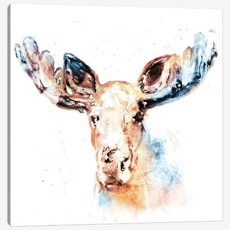 Watercolour Moose Canvas Print #ESK292} by Edward Selkirk Canvas Art