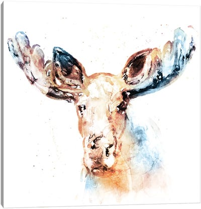Watercolour Moose Canvas Art Print