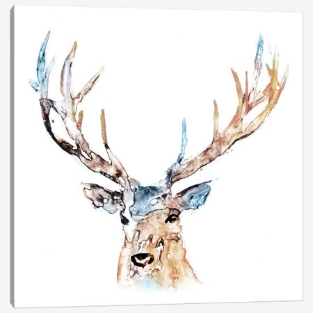 Watercolour Reindeer Canvas Print #ESK294} by Edward Selkirk Canvas Print