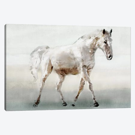 White Horse Canvas Print #ESK300} by Edward Selkirk Canvas Art