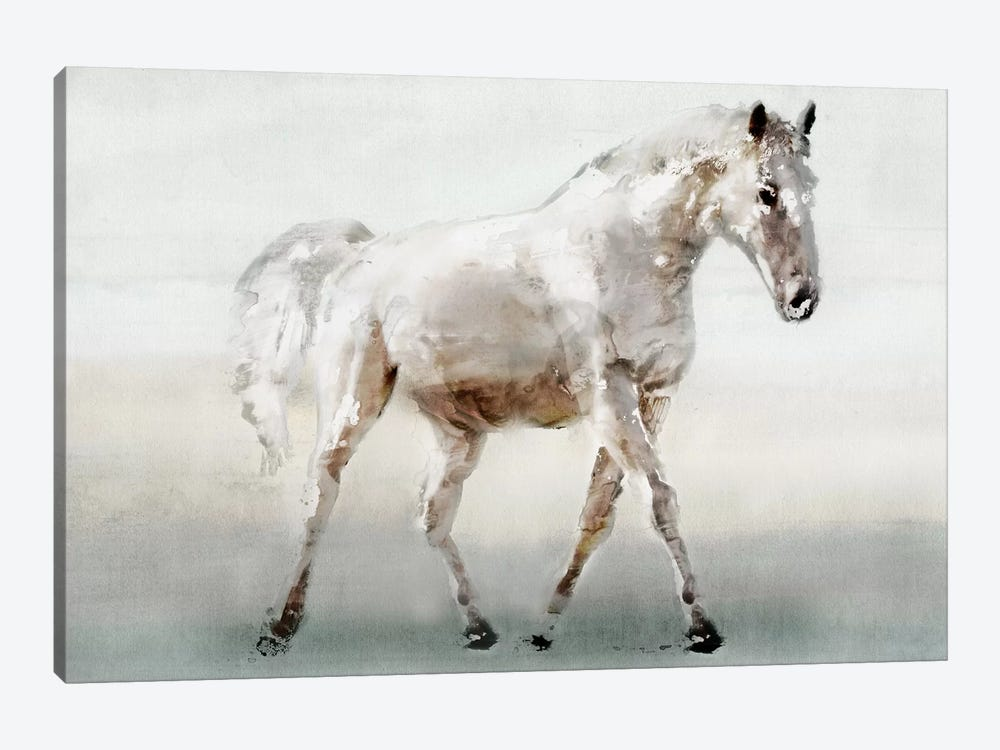 White Horse by Edward Selkirk 1-piece Canvas Art