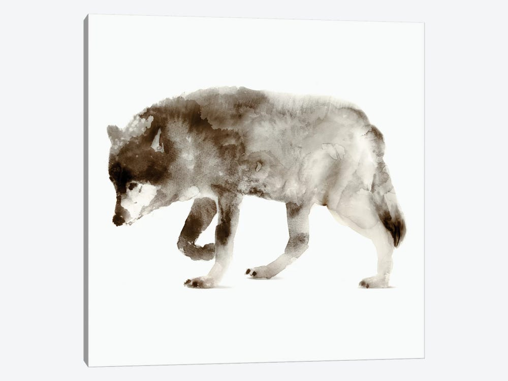 Wolf by Edward Selkirk 1-piece Canvas Art Print