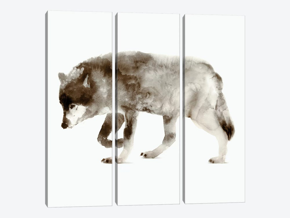 Wolf by Edward Selkirk 3-piece Canvas Art Print