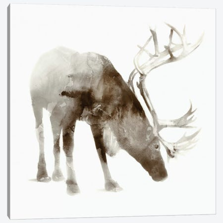 Caribou Canvas Print #ESK30} by Edward Selkirk Canvas Artwork