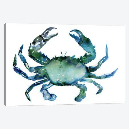 Crab Canvas Print #ESK41} by Edward Selkirk Art Print