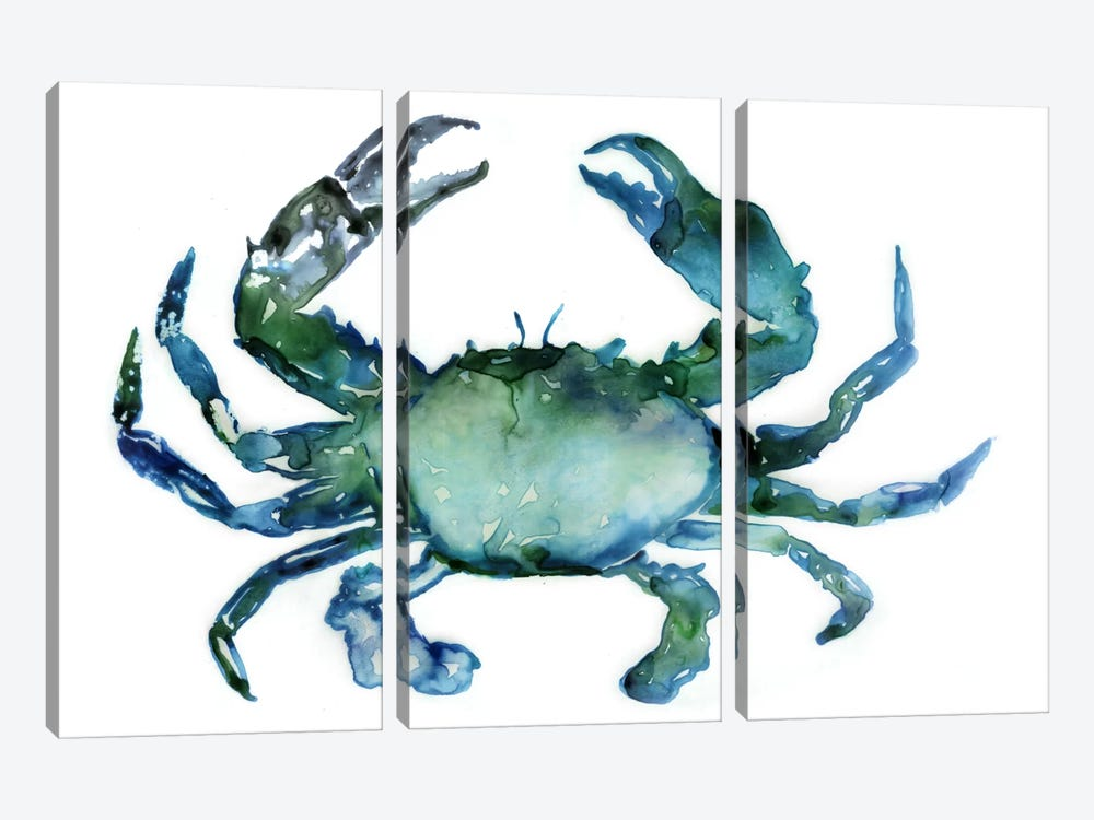 Crab by Edward Selkirk 3-piece Canvas Art