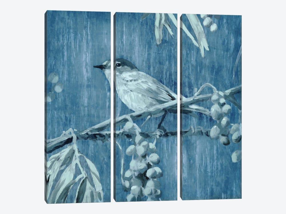 Denim Songbird I by Edward Selkirk 3-piece Canvas Art