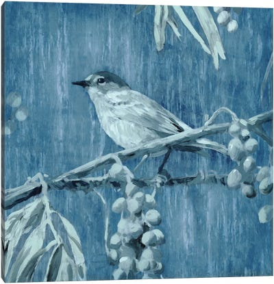 Denim Songbird I Canvas Art Print