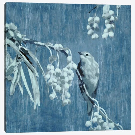 Denim Songbird II Canvas Print #ESK53} by Edward Selkirk Canvas Artwork