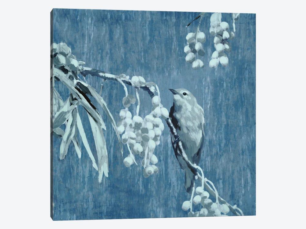 Denim Songbird II by Edward Selkirk 1-piece Canvas Print