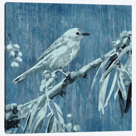 Denim Songbird III Canvas Print #ESK54} by Edward Selkirk Canvas Art Print