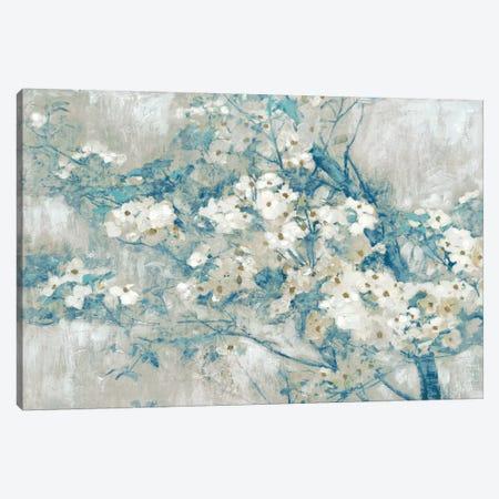 Dogwood Bloom I Canvas Print #ESK57} by Edward Selkirk Art Print
