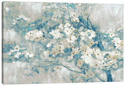 Dogwood Bloom I Canvas Art Print